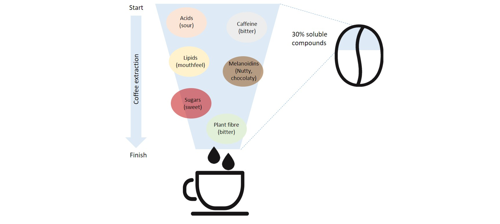 soluble compounds found in coffee contributing to flavour