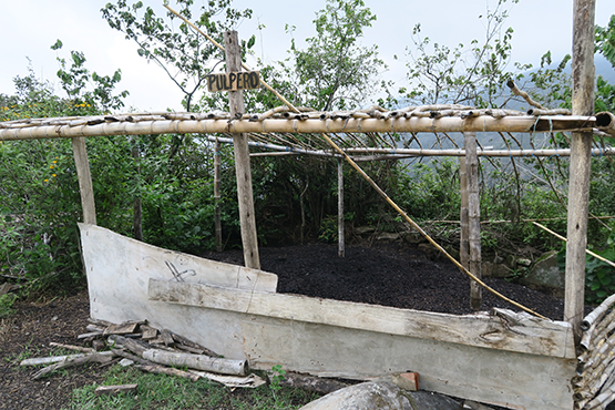 composting for organic coffee